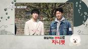 【WINNER】姜昇润、李昇勋 新综艺-狗狗很优秀预告 4月27日 (周一)首播