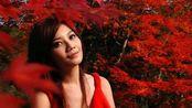 梁静茹宣布签字离婚后,晒演唱会海报,手持银色玫瑰优雅知性