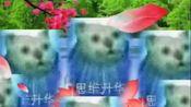 mur猫. 诱 捕 器