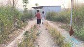 带两小外甥到养殖场玩,体验一下童年阴影,被老母鸡追逐