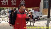 许兰演绎曲剧《光棍与寡妇》河南省新乡市曲剧协会演出。