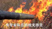 弥勒市森林防火指挥部清明节防火公益广告
