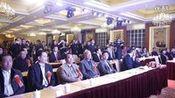 梅州市丰顺商会成立庆典大会视频2—在线播放—优酷网,视频高清在线观看