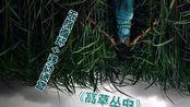 【小侠】史蒂芬·金小说改编《高草丛中》年度最烧脑电影头衔,或被它拿下