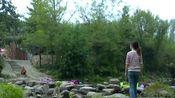 张思恩:最美西河我的家(信阳新县)