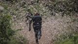 沙漠蝗虫一夜占领一国,联合国警告:再不行动将面临人道主义危机