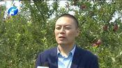 [河南新闻联播]三门峡陕州农商银行:主动作为 助力发展