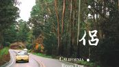 VLOG #17 美国加州自驾一号公路(上)旧金山-洛杉矶