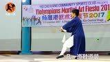 香港武当弟子演练七星剑,身着凡一道袍,透出一点仙风道骨的感觉