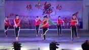 坡仔九美埇舞队《姐姐我爱你》2019横岭中山舞会广场舞联欢晚会(二月十六)