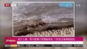浙江上虞:男子钱塘江观潮被卷走 11秒后又被浪拍回岸