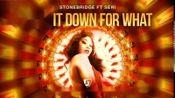 StoneBridge ft Seri Turn It Down For What (StoneBridge Damien Hall Ibiza Radio)