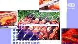 中国餐饮加盟网 、小吃加盟