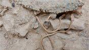 """江西省一古墓,发现一条""""龙"""",专家慌忙申请武装保护"""