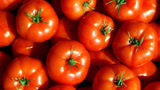 教你辨别激素西红柿,看准这三点,一眼就能辨别,别再买错了