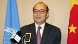 中国驻联合国陈旭大使:某些西方国家把分歧公开化,我们坚决反击