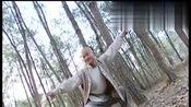 南少林:方世玉与罗汉首座切磋,双方你来我往,和尚竟想暗下毒手