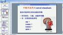 药物化学15-教学视频-西安交大-要密码到www.Daboshi.com