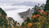 秋日的洛阳老君山风景,云雾缭绕,红叶漫山遍野