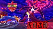 【Z小驴】精灵宝可梦 盾~第31期传说对战!收服无极汰那!