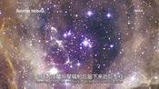 哈佛公开课 钱德拉X射线中心 46 60秒解读Rosette Nebula—在线播放—优酷网,视频高清在线观看