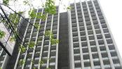 揭秘司法拍卖房:价格非常实惠,为何很少有人去买?