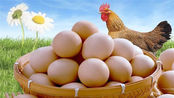 为预防胆固醇升高,只吃蛋白不吃蛋黄?你可能因小失大了