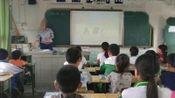 川教版英语四年级下册Unit 2 Having a PicnicLesson 5 What Are Those-代老师优质公开课教学视频(配课件教案)