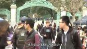 可能分分钟收回移民国籍,如果还想拿回中国国籍,怎么办?