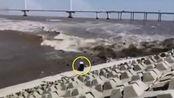 浙江上虞一男子在大桥观潮时被涌来的潮水卷走,约11秒后又被浪拍回了岸