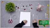 教宝宝用卡纸制作玩具,简单又有创意,这样培养的孩子心灵手巧-喵喵手工课第一季-喵喵手工课堂