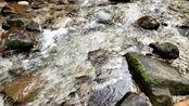 手机拍摄峨眉山低山区溪流。原声、无配音、无解说。只为放松心情