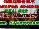 邳州银杏树价格 最新银杏树价格 山东银杏树价格 银杏小苗价格