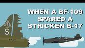 当一架bf-109放过一架受损的b-17【YARN HUB】