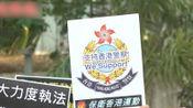 """爱港团体集会力挺港警""""一哥"""":严惩暴徒,还我法治!"""