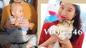 Vlog #46 近期购物开箱:Madewell/Shopbop/Uniqlo   家庭日常碎片   海星成长记