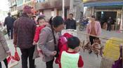 30年没见的农村赶集,在江西赣州的山里看到了,人山人海,好热闹