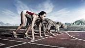 人类百米可以跑进9.58秒,这个记录在动物界算什么水平?