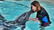 """为什么海豚喜欢""""轻吻""""孕妇的肚子?真能和胎儿沟通吗?专家:天然B超仪"""