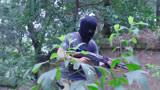 《反恐特战队2》八面佛要他的手下杀了赵欣并把视频发到网上01