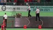 爆笑体育:赛场上的搞笑画面,各种失误瞬间,太逗了!