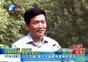 河南新闻联播20140528以活动高标准促工作高标准——访鹤壁市委书记魏小东