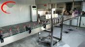 125ml白酒灌装机-扁瓶灌装生产线-保健酒灌装机