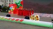 宜州区第六届中小学文化艺术节