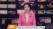 湖南省2名党员领导干部被开除党籍、开除公职