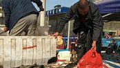 安徽阜阳:农村集市大草鱼5.5一斤贵不?小亮一次买三条