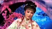 杨婷娜、忻雅琴表演《红楼梦》葬花一折 委婉动听