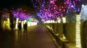 迎宾广场夜景灯饰2