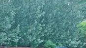 这雨下起来没完了山东省聊城市高唐县清平