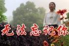 杨美华一首伤感情歌《无法忘记你》声声催泪感人,听哭多少痴情人